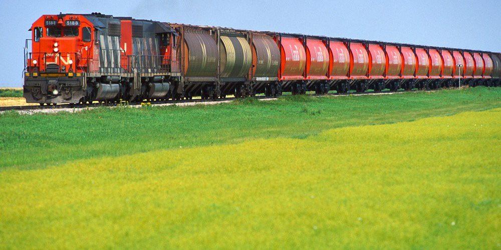 train-CN-grain-ggilmour-file